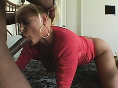Hot blonde milf Alexis sucks on a giant black cock