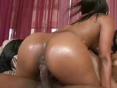Doggy style fucking perfect black wet ass
