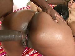 Doggy style fucking ebony shaved vagina