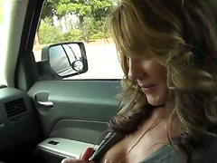 Brunette milf picked up for some sexual acts